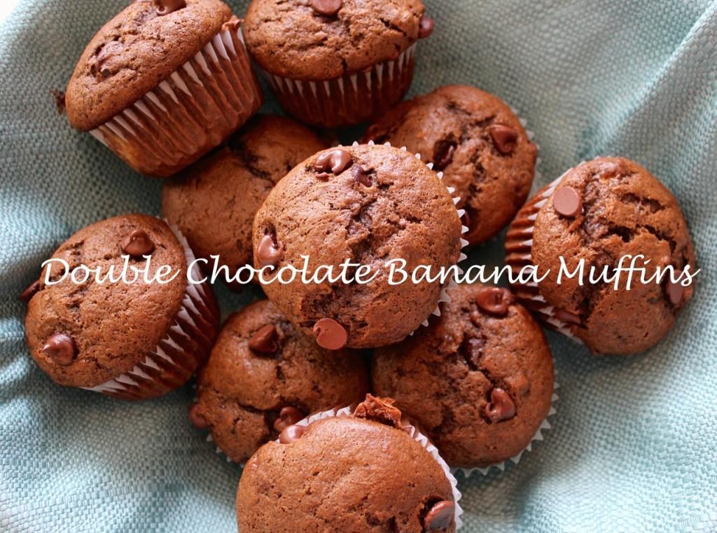 chocoalte muffins